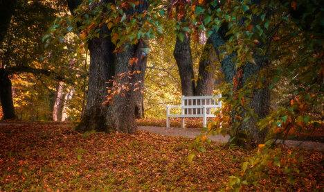 Осень - пора путешествовать!